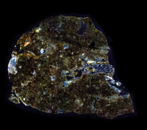 NWA 8687 Meteorite Thin Section