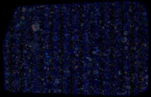 NWA 3358 Meteorite Thin Section False Color
