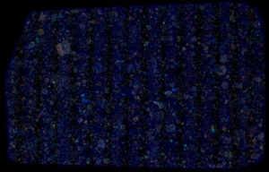 NWA 3358 Meteorite Thin Section False Color