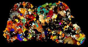 NWA 4590 Meteorite Thin Section