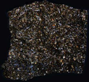NWA 8159 Meteorite Thin Section
