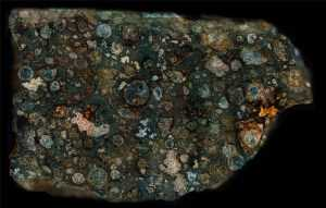 NWA 2364 Meteorite Surface - Side B