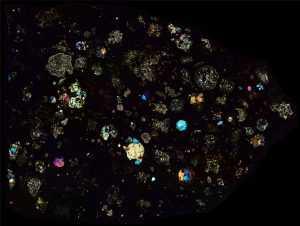 NWA 2364 Meteorite Thin Section