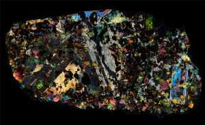 NWA 1950 Meteorite Thin Section