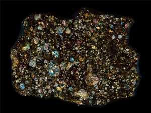 NWA 3189 Meteorite Thin Section
