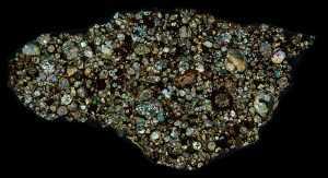 NWA 10669 Meteorite Thin Section